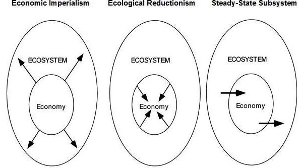 Economics For A Full World